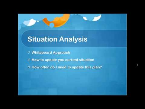 Marketing Plan- Situation Analysis and Target Audience