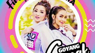 Download lagu Fitri Carlina - Goyang Gagak Feat. Kania (official Video)