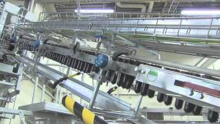 Campet Üretim Süreçleri