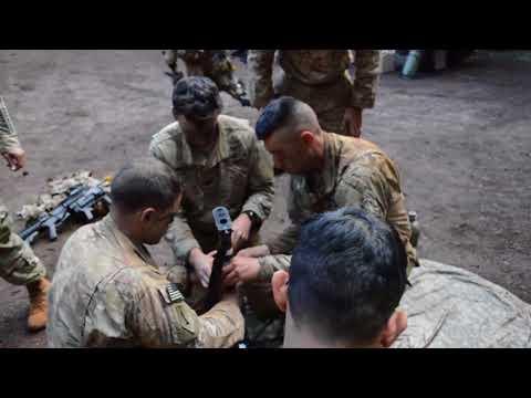 25th ID Conducts Mungadai Exercise B-roll SCHOFIELD BARRACKS EAST RANGE,HI,UNITED STATES 01.11.2018