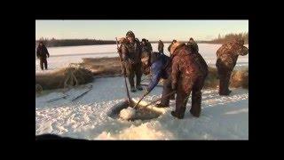 Мунха - зимняя рыбалка неводом. Выпуск 27. (2009 г.)