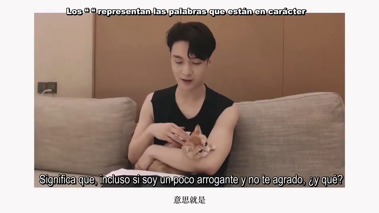 """[SUB ESP] 200724  EXO #LAY - """"Explica la letra de Changsha con sus gatos Lulu & Luobo"""""""