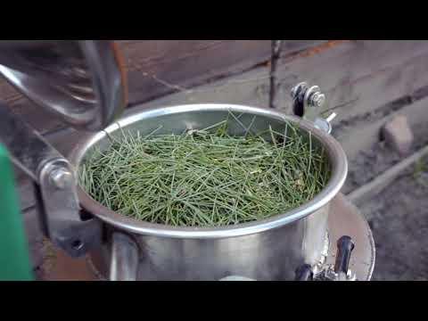 Как получают эфирное масло кедровой хвои