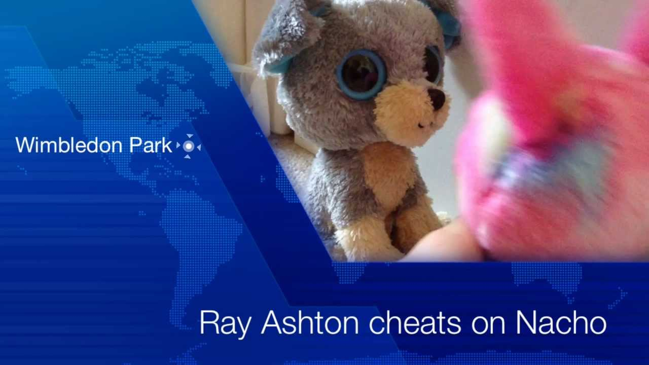 BBC News ( Beanie Boo City News ) Is Ray Ashton Cheating On Nacho ... 2b0f9218091
