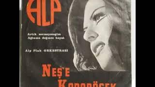 Neşe Karaböcek - Dertler Benim Olsun Orjinal Kayıt (1974)