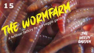 VERMICULTURE - Wormville Part Two
