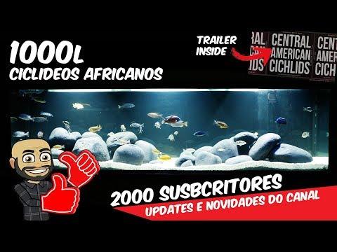 MONTAGEM 1000l Malawi - Updates - NOVO PROGRAMA