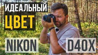 NIKON D40x - фотоаппарат с ИДЕАЛЬНОЙ ЦВЕТОПЕРЕДАЧЕЙ?