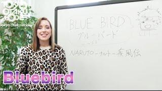 【Diana Garnet】Bluebird | Naruto【Anisong Acapella】