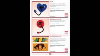 Akıl ve Zeka Oyunları Eğitmenliği Eğitim Videosu 4