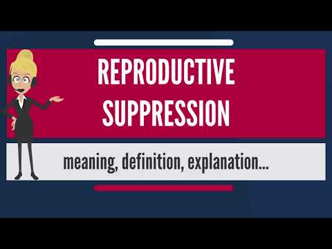 What is REPRODUCTIVE SUPPRESSION? What does REPRODUCTIVE SUPPRESSION mean?
