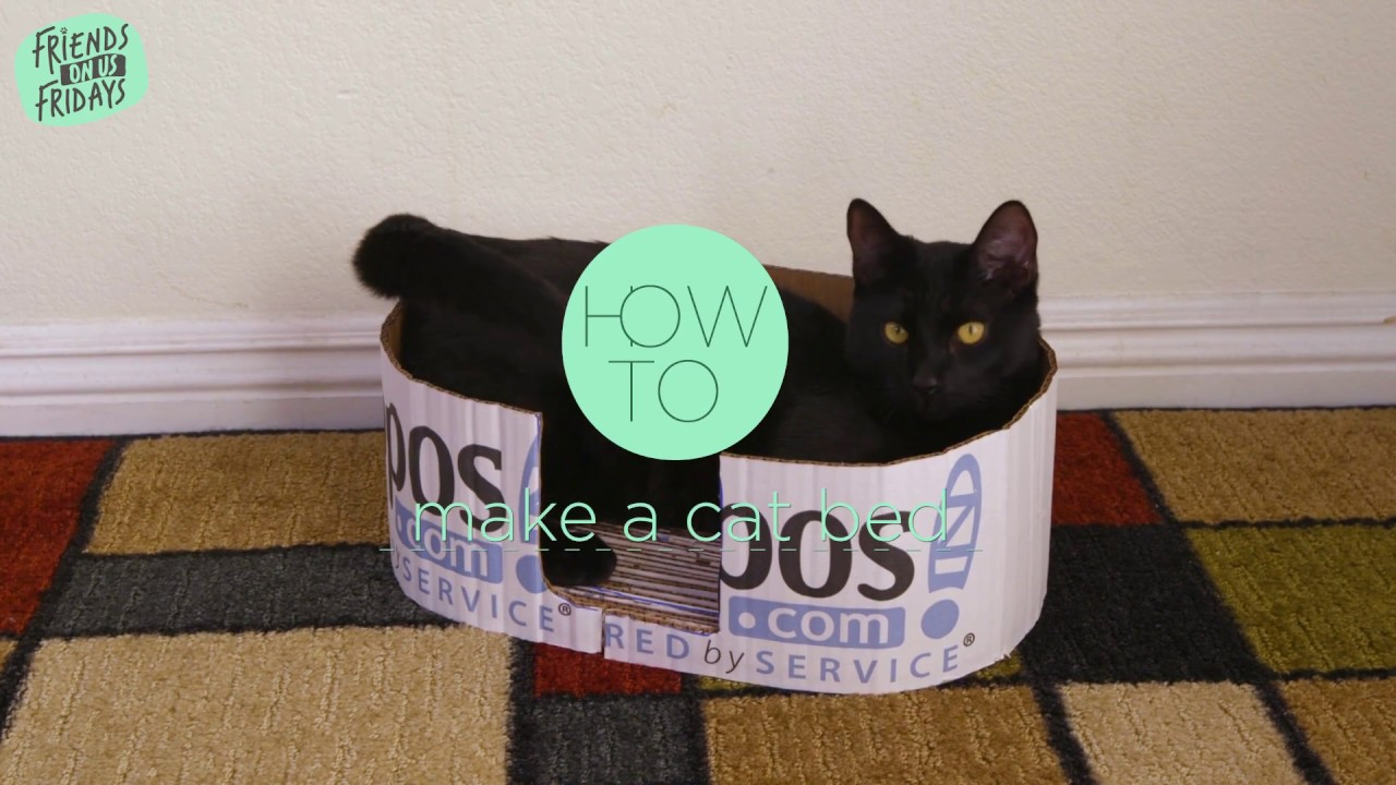 How To Make A Cat Bed From A Cardboard Box Zappos Com Diy Youtube