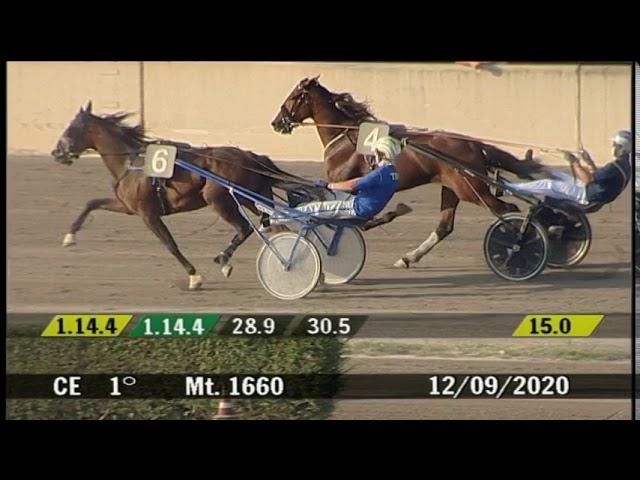 2020 09 12 | Corsa 1 | Metri 1660 | Premio Contrade Di Cesena