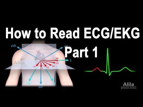 How to Read ECG/EKG,  Part 1, Animation