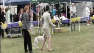 Gold Coast Canine Club