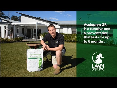 Prevention for turf weeds and pests - Start spring on the right foot! from YouTube · Duration:  3 minutes 1 seconds