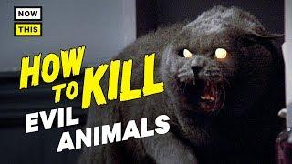 How to Kill Evil Animals | NowThis Nerd