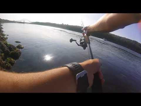 Cape Cod Canal: Epic Striper Blitz