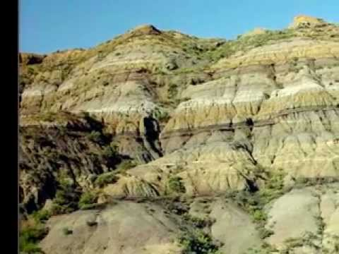Mass Extinction and the K-T Boundary