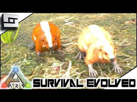 ARK: Survival Evolved - BREEDING BEAVER BABIES! S3E72 ( Gameplay )