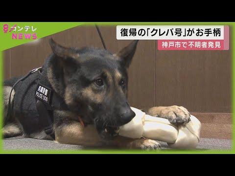 犬 クレバ 警察