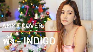 พัง - INDIGO [Cover by Ammy]