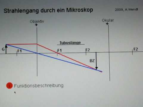 Strahlengang durch ein mikroskop youtube