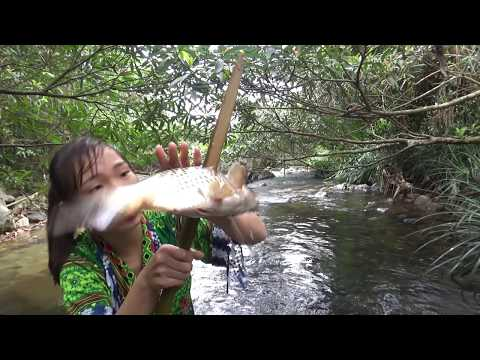 Survival skills: Catching fish by primitive skills and cooking fish for eating delicious