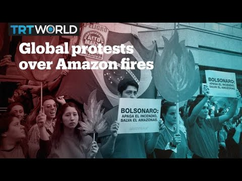 People around the world protest Brazil government's inaction on Amazon fires