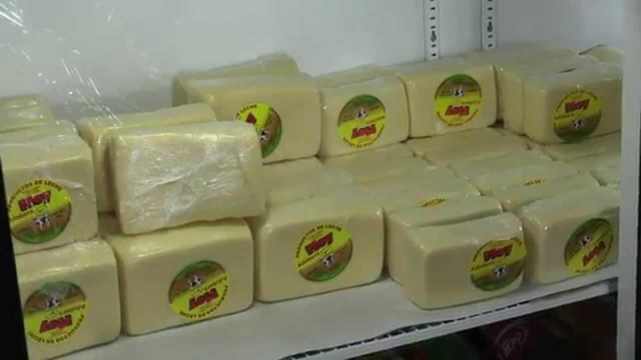 industrializaci n de la leche f brica de quesos youtube