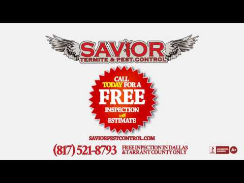 Free Pest / Termite Inspection with Savior Pest Control