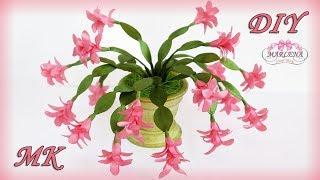 Flores e cactos de fitas e tecidos – Para decoração