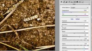 How to enhance texture in RAW photos - Week 66