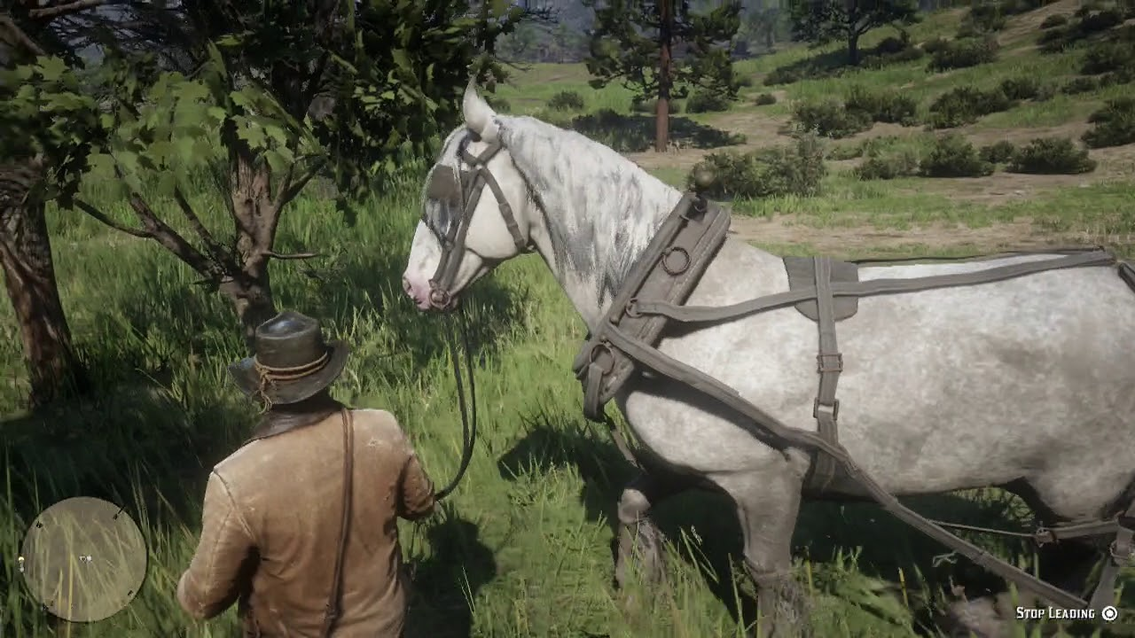 Red Dead Redemption 2 Calm The Escaped Horse Youtube