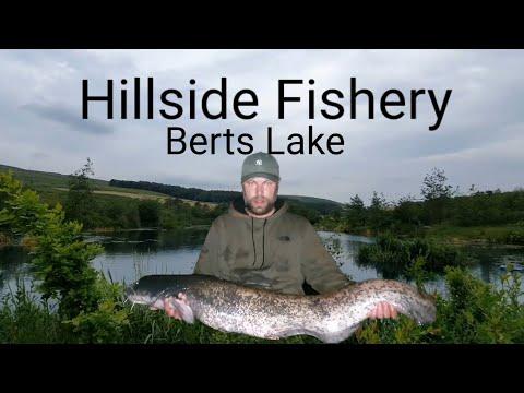 Hillside Fishery!! Catfishing UK, Bert's Lake ,June 2019