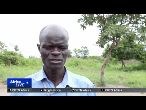 UN: 86% of South Sudanese refugees in Uganda are children