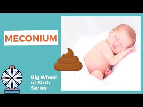 What is MECONIUM? Baby bowel movement before birth