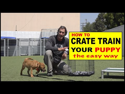 How To CRATE Train Your Puppy - The EASY Way To Crate Train Your Dog