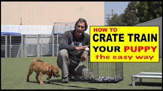 How to CRATE Train Your Puppy  The EASY Way to Crate Train Your Dog