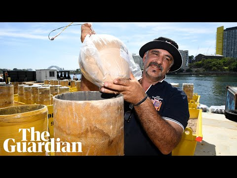 The Secret Ingredient To Sydney's NYE Fireworks