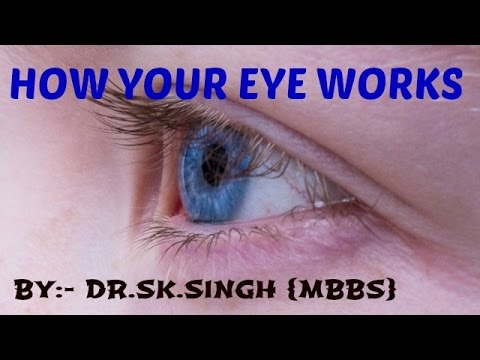 How the eye works/structure of eye for  biology class 11th,NEET,AIIMS ,AIPMT,/Mechanisms of Vision