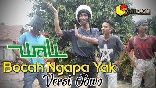 Download lagu Wali Bocah Ngapa Yak Versi Jowo MP3