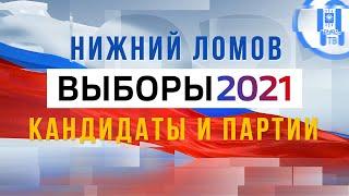 Выборы 2021 кандидаты и партии Нижний Ломов