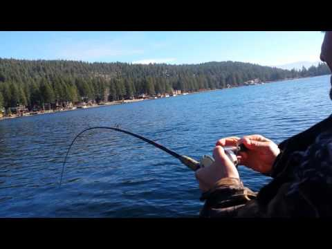 Donner lake 18 pound Mackinaw battle 11-18-16