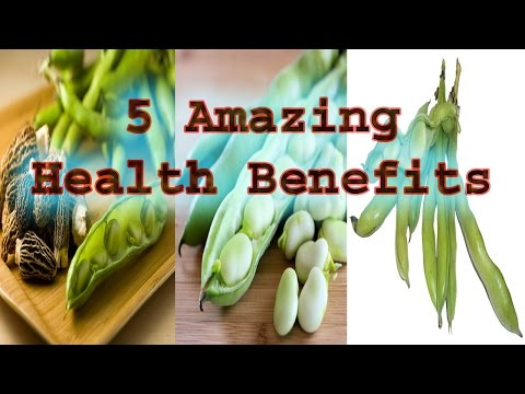 5-amazing-health-benefits-and-nutritional-value-of-fava-beans