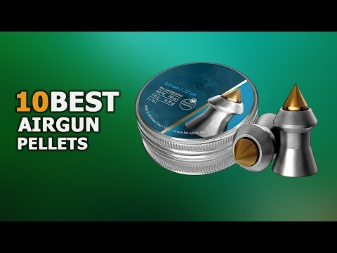 10 Best Airgun Pellets for Hunting