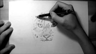 Hand Drawing 6 Animal (БилэгСод)