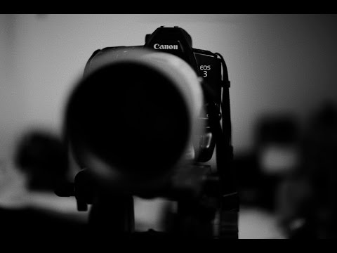 Canon EOS 3 + PB-E2 6fps on High Continuous Drive (EF 300mm f/2.8L IS)