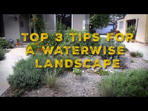 Conservation Quick Tips: Waterwise Landscape Maintenance