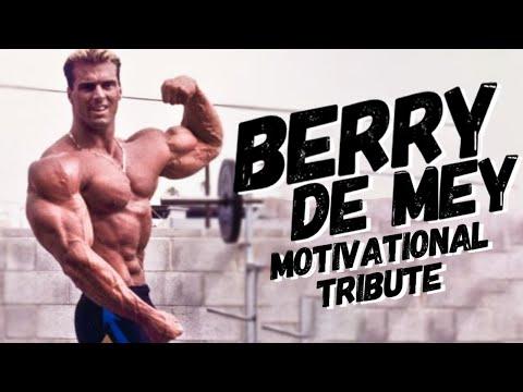 Berry De Mey